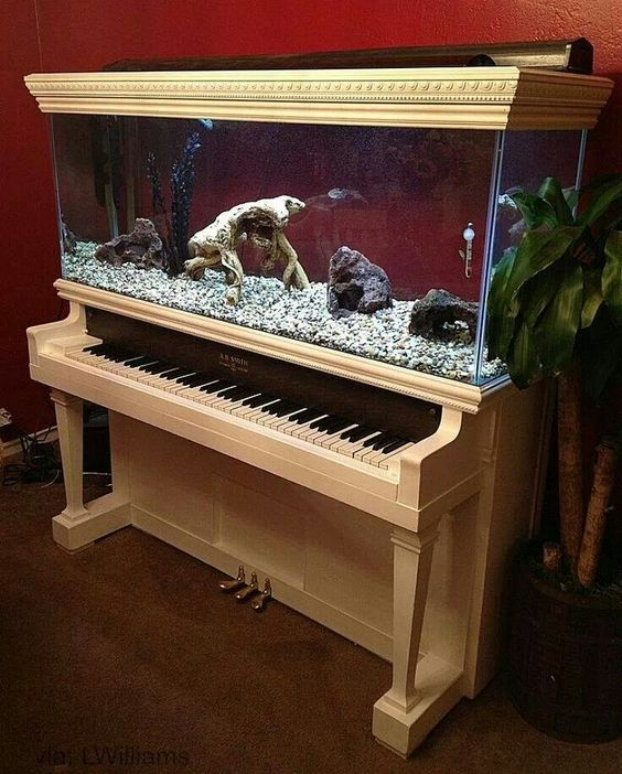 upcycled and repurposed piano: Piano Aquarium